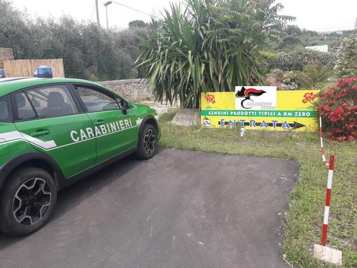 Diano Castello: presunta lottizzazione abusiva nell'area del camping 'Al Roseto', si è aperto questa mattina il processo