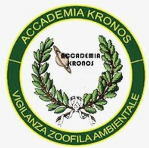 Continua la campagna di sterilizzazione portata avanti dai volontari di Accademia Kronos