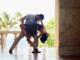 """Torna di moda il ballo Latino Americano: sempre più giovani iscritti alla A.S.D. """"Noi della LDM"""""""