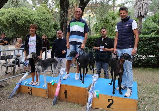 """Ai Giardini Löwe il primo """"Bordighera Dog Show"""", un'occasione per sfilare con il proprio amico a quattro zampe (foto)"""