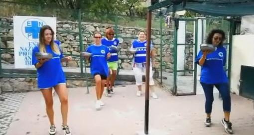 Sanremo: un 'balletto' dei volontari Enpa sulla base di 'Jerusalema' per aiutare gli animali del canile (Video)