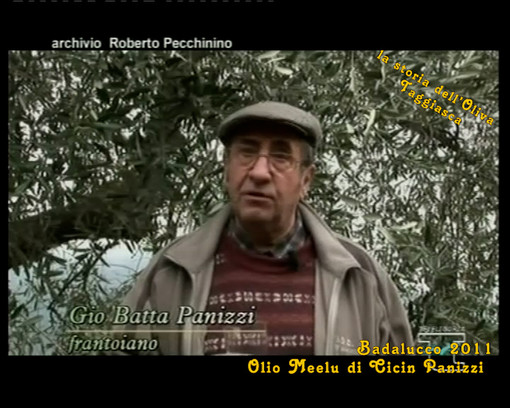 Sulle alture di Badalucco alla scoperta di come vengono raccolte le olive: protagonista il frantoiano Giobatta Panizzi