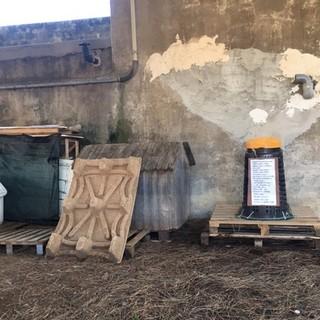 Taggia: un bidone per raccogliere il cibo per i gatti vicino al poliambulatorio di via Levà