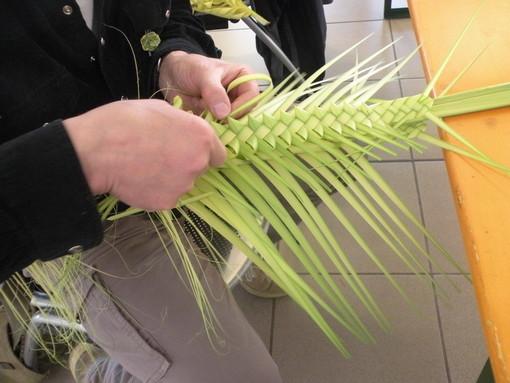 Due gazebo a Ventimiglia e Camporosso domani per l'associazione Aceb: distribuzione di palme e rami d'ulivo