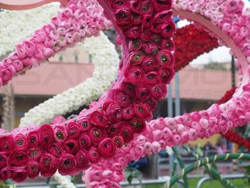 Due giorni all'insegna dei fiori, ecco come divertirsi e cosa vedere in questo secondo week-end di marzo