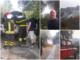 """Incendio di Costa d'Oneglia, la testimonianza di un residente: """"Le fiamme a venti metri da casa"""" (Video)"""