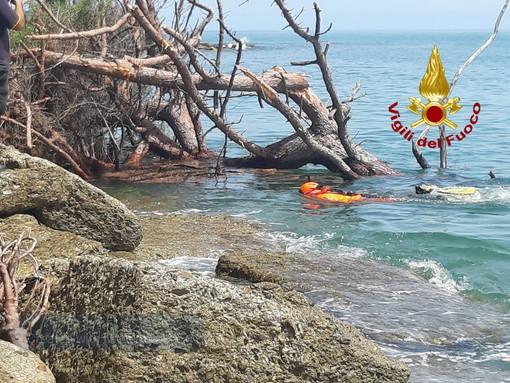 Ventimiglia: crolla un grosso pino su una spiaggetta di Latte, lievemente ferita una donna di 45 anni (Foto)