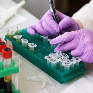 Zero contagi in Liguria: gli altri dati del Coronavirus nelle ultime 24 ore