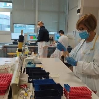 Coronavirus: numeri stazionari oggi in Liguria e nella nostra provincia, lieve rialzo dei ricoverati in regione