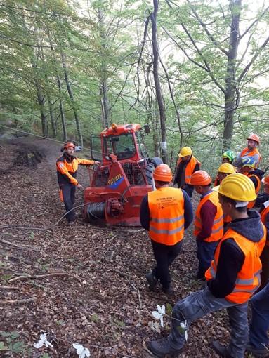 A Cosio d'Arroscia una giornata dimostrativa di tecniche di lavoro in bosco organizzata da Regione Liguria e ACAL