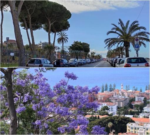 """Tre giorni in zona bianca in Liguria: nell'estremo ponente il morale è alto e l'imperativo è """"ripartire"""""""