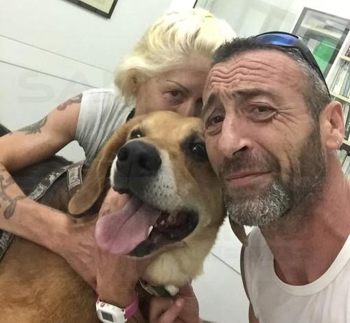 Sanremo: 'Armando' ha bisogno di una trasfusione di sangue e 'Rex' risponde presente, la storia del cucciolone del canile Enpa (Foto)