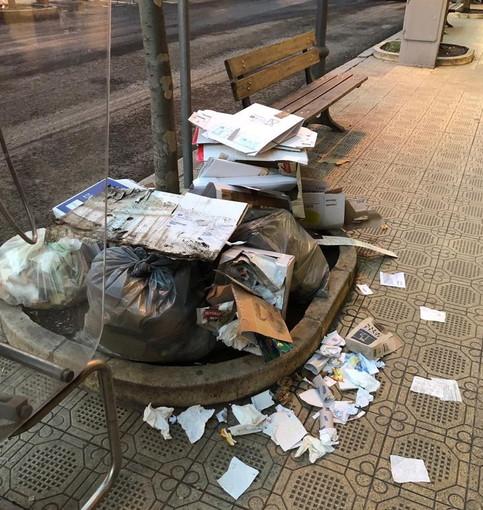Sanremo: degrado in un'aiuola di corso Garibaldi, lo sfogo del nostro lettore Franco (Foto)