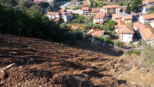 """Badalucco: frana in regione Poggio, lettrice chiede risposte """"Tante parole ma siamo ancora isolati e ora arrivano le piogge autunnali"""""""