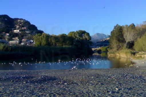 Ponte ciclo-pedonale tra Camporosso e Ventimiglia: c'è l'ok definitivo, il progetto milionario passa all'esame della Conferenza dei Servizi