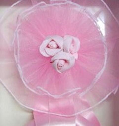 Ventimiglia: fiocco rosa in Forza Italia, è nata la piccola Agata primogenita di Marco Agosta e della moglie Arianna Giacchin