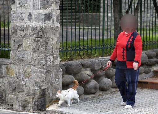 Sanremo: dopo le molte scuse per uscire di casa ecco chi fa la passeggiatina con il gatto al guinzaglio (Foto)