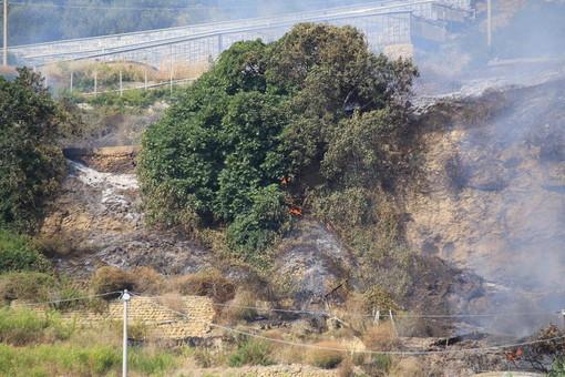 Pontedassio: incendio di sterpaglie vicino ad alcune piantagioni, intervento dei Vigili del Fuoco