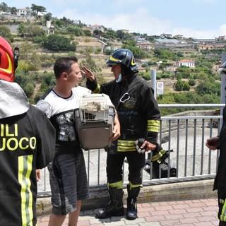 Sanremo: incendio di stamattina in via Pascoli, salvi per miracolo madre e 4 figli, due appartamenti inagibili (Foto e Video)