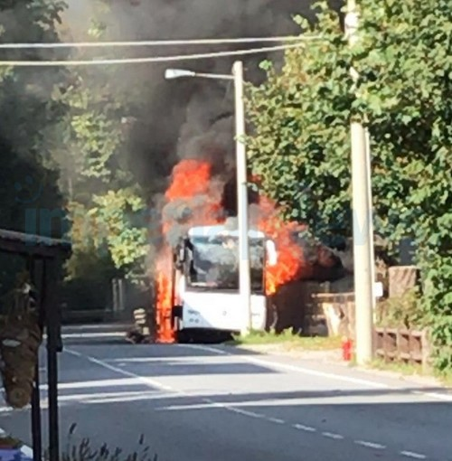 Col di Nava: non c'è pace per la Riviera Trasporti, pullman completamente distrutto da un incendio (Foto)