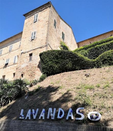 Monte Vidon Combatte in provincia di Fermo ospita la IX edizione del Lavandaso