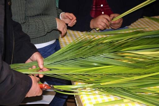 Sabato e domenica prossimi la distribuzione delle palme a cura dell'associazione benefica 'Aceb'