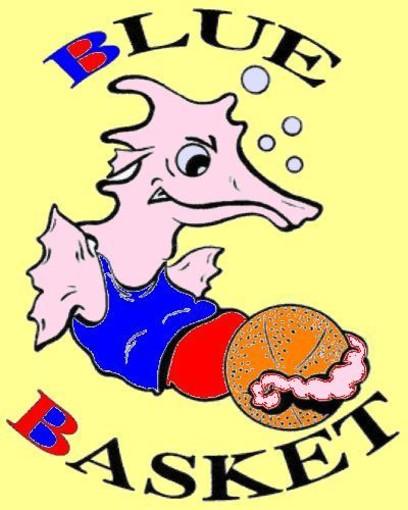 Pallacanestro: nel campionato esordienti, male la prima per il Blue Basket di Diano Marina