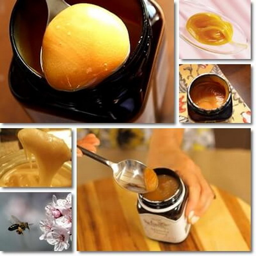 A Sanremobio l'esclusivo miele di Manuka dalle foreste incontaminate dell'Australia e della Nuova Zelanda
