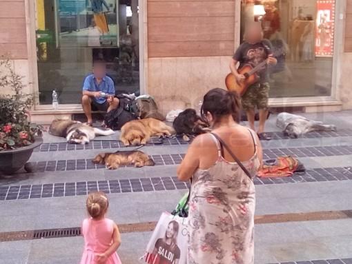 Sanremo: mendicanti con una miriade di cani in via Matteotti, non un bello spettacolo nel 'salotto buono' (Foto)