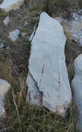 Il gruppo ArcheoNervia trova vicino alla diga di Tenarda una cava di estrazione di blocchi di roccia dove venivano realizzati menhir