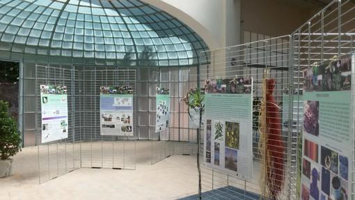 Sanremo: tutti i segreti delle fibre naturali a Villa Ormond, da domani l'esposizione alla Palazzina Prediali