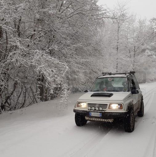 Maltempo: fitta nevicata tra monte Bignone, Ghimbegna e Bajardo. Coltre bianca che ha raggiunto i 10 cm (Foto e Video)