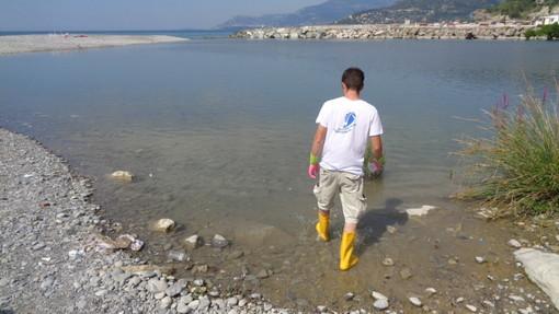 Prelievi di 'Goletta Verde' e Legambiente nel Ponente: inquinato il mare in tre zone della nostra provincia