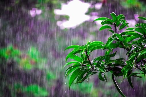 Perturbazione sulla nostra provincia: in arrivo piogge meno intense del previsto, nessuna allerta e schiarite da domani pomeriggio