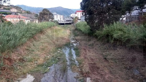 Il torrente Armea