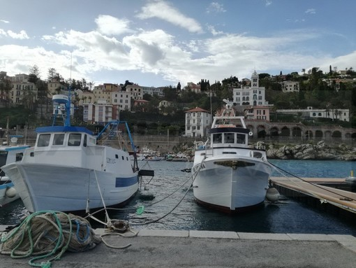Bordighera: oggi pomeriggio un dibattito sul futuro del porto su turismo, porto, pesca, sicurezza e Pelagos