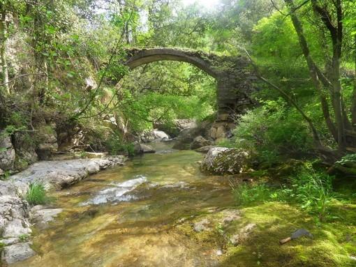 Il ponte sul Rio Carne al 64° posto nazionale tra le migliaia di siti votati tra i 'Luoghi del Cuore' del Fai