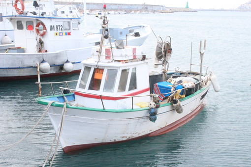 'Giovani che sfidano il Covid': al via la corsa all'oscar per gli agricoltori e pescatori liguri