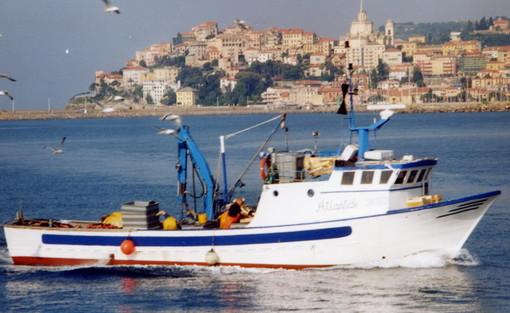 Emergenza Coronavirus: la crisi va a colpire pesantemente anche il settore ittico della nostra regione