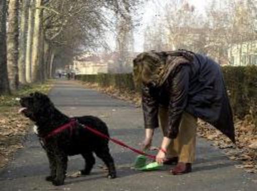 Ventimiglia: troppe deiezioni canine sui marciapiedi della città, le lamentele dei commercianti