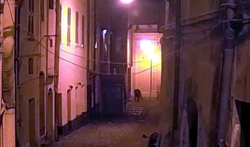 Sanremo: due rapine in centro durante lo scorso Festival, i malviventi scoperti con le immagini delle telecamere (Foto)