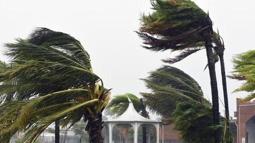 Vento forte su tutta la provincia (89 km/h a Ventimiglia): nel corso della giornata sono previste mareggiate, calo delle temperature