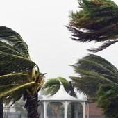 Avviso Arpal per vento forte: attese raffiche fino a 90 km/h. Il picco di freddo a Colle Belenda con -7,8