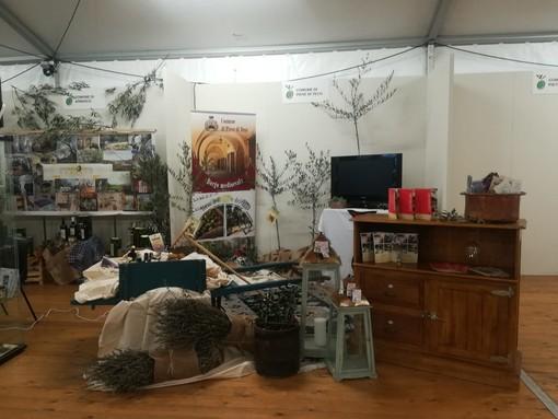 """Pieve di Teco: soddisfazione per la buona riuscita di Olioliva 2019,  il vicesindaco Zunino """"Grande affluenza e interesse per il nostro stand"""""""