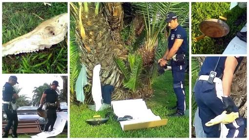Sanremo: trovano un giaciglio allestito da un clochard, ma vicino c'è anche il teschio di un animale (Foto)
