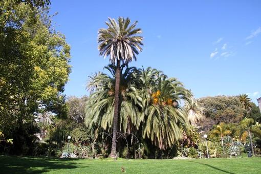 Sanremo: per le Giornate Europee del Patrimonio il Club per l'Unesco organizza una passeggiata nel Parco di Villa Ormond
