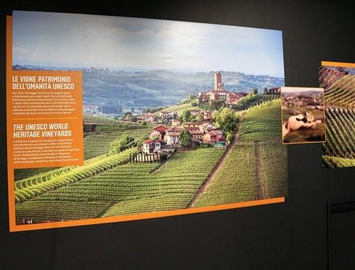 A Priocca (CN) è stato inaugurato il nuovissimo Wine Experience, un percorso esperienziale e interattivo per scoprire il mondo affascinante del vino