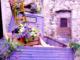 Vallebona: al via la tredicesima edizione di Ape in Fiore fra degustazioni e street food