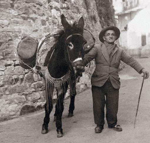 'Sanremo e l'Europa', la mostra a Santa Tecla: quando, come e perché la terra di Sanremo era fertile ma...