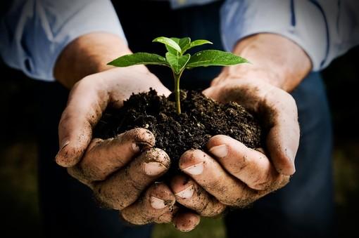 Coldiretti: con la desertificazione ed i cambiamenti climatici addio a un quarto della campagna italiana